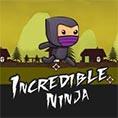 incredible ninja